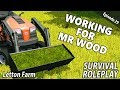 MOWER & THE MINI LOADER | Survival Roleplay | Farming Simulator 17 - Letton Farm - Ep 29