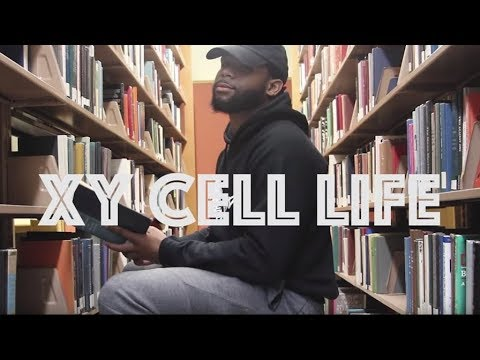 Morehouse College student's biology rap video goes viral
