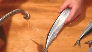 《サンマ(秋刀魚)の刺身【1】》・・・・大和の 和の料理《刺身》
