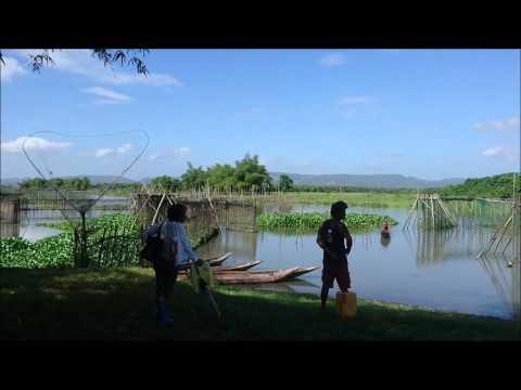 Bicol Farm 720p