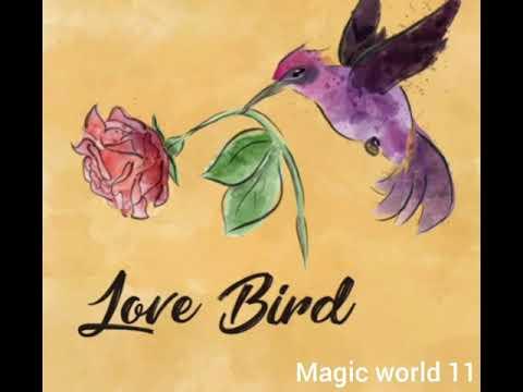 DM DF current Energy and spiritual Coaching @MAGIC WORLD 11