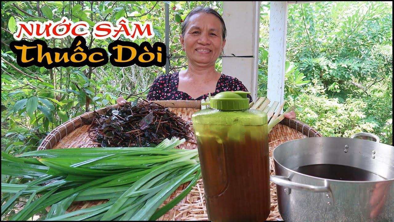 Bà Tám Bình Dương Hái ''Cây Thuốc Dòi'' Về Nấu Nước Sâm, uống mát người bổ phổi | DTP CHANNEL