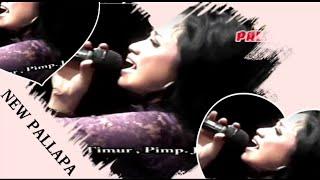 Seumur Jagung Voc Anisa Rahma _ New Pallapa Dangdut Koplo