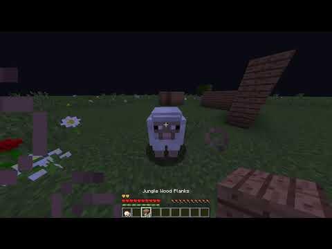 Serie Minecraft SaraPastelitos Capitulo 7