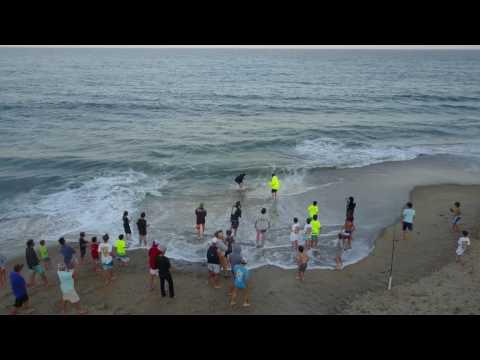 Shark Caught On Ocean City Beach 6/10/17