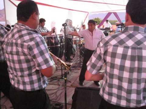 LOS YAIPEN EN LA VENDIMIA DE CARRETRIA , PATIVILCA, PERU, 2014