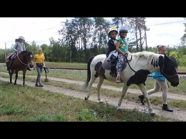 Wkacje z koniem 2019