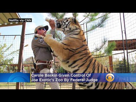 Floridas-Carole-Baskin-Given-Control-Of-Joe-Exotics-Zoo-By-Federal-Judge