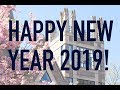 Happy New Year from the Sanford School!