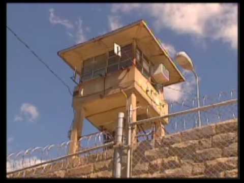 Gangs in Folsom prison.