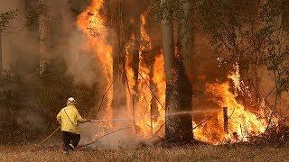 'Catastrophic' bushfire warnings issued across New South Wales, Australia