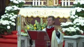 Omelia 23 Aprile 2017  Domenica della Divina Misericordia - Santa Messa nei Secondi Vespri