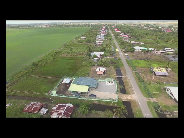 Aerial Shots Suriname Nickerie Clara Pld.