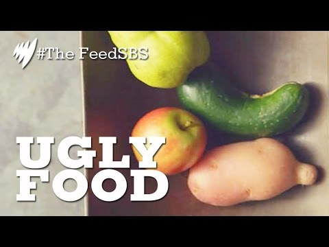 Ugly food: a solution to food wastage? I The Feed