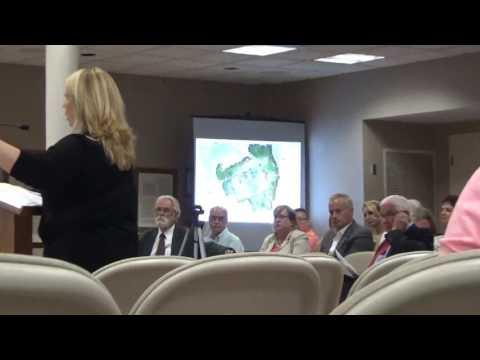 2017 July 11 Veterans Park, work sessions Florence, Al. city council
