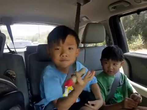 Kids Dancing: Carpool Karaoke to Despacito (warning: very silly)