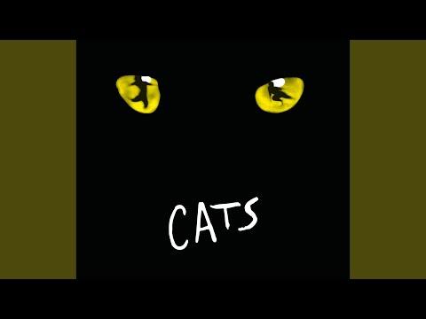 Gus: The Theatre Cat (UK 1981 / Musical