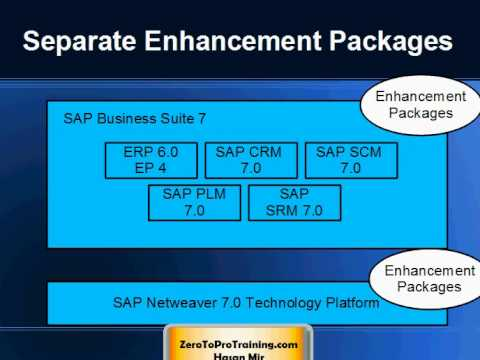 SAP Business Suite 7 Overview
