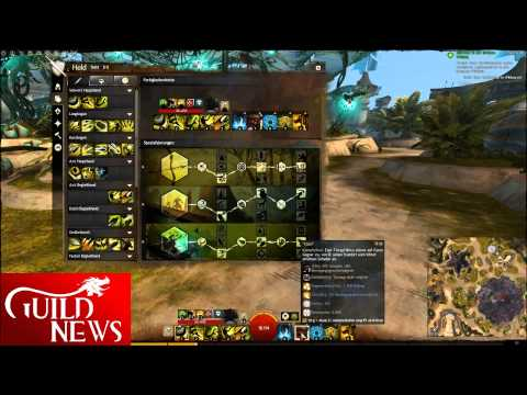 Guild Wars  Hunter Pve Solo Condi Build