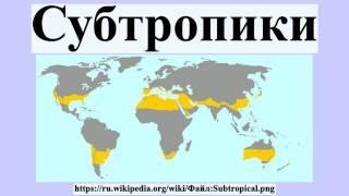 видео Субтропики - Презентация