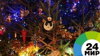 Новогоднюю елку в Вильнюсе признали лучшей в Европе - МИР 24