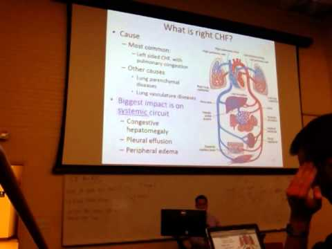 Path Cardiovascular Diseases 1of2