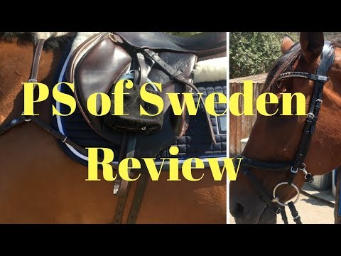 PS of Sweden Review | Jump off Revolution bridle, Breastplate, and more!