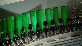 Birth of a Beer