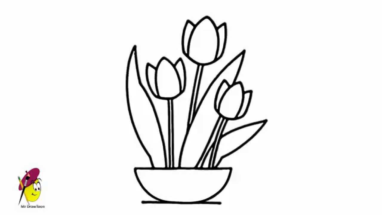 tulip how to draw flowers tulip youtube