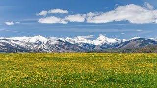 Star Mesa Ranch  - Aspen, Colorado Real Estate