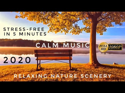 Relaxing Nature Scenery with Calm Music in 2020