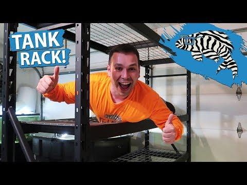 NEW FISH TANK RACK!! Fish Room Build