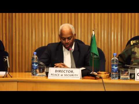 Director,  AU Peace and Security at opening of African Defense Experts meeting