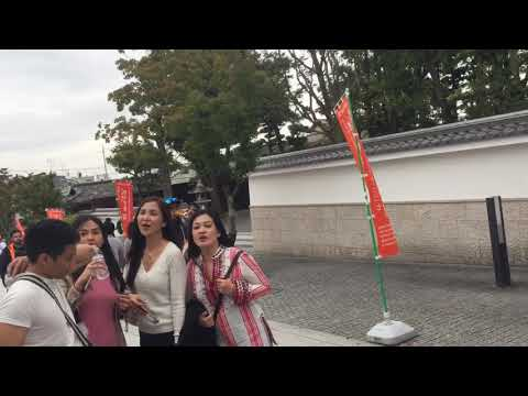 Touring Kyoto Japan with friends