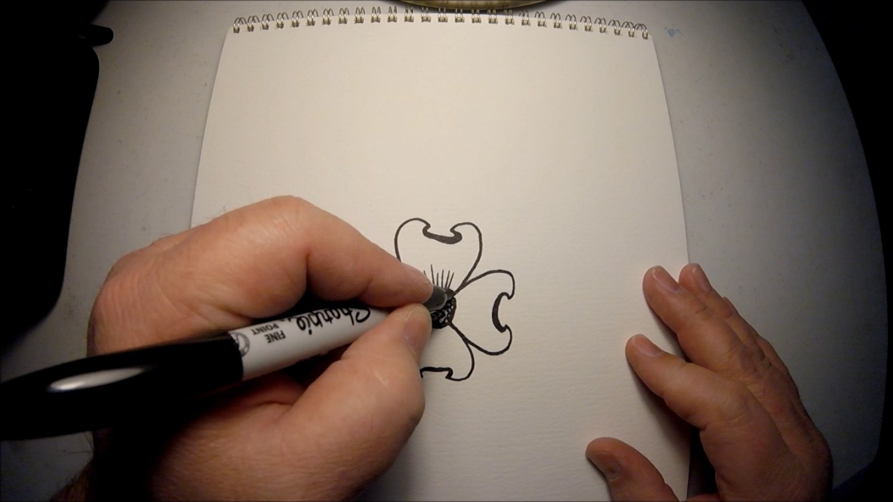 8d24097e2 VA Dogwood drawing instructions - YouTube