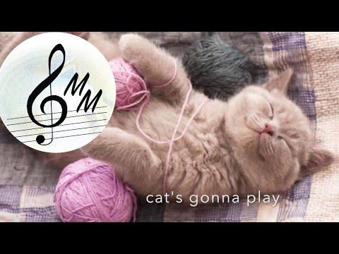 Cat's on the prowl  Chiara Talone  canzoni jazz blues