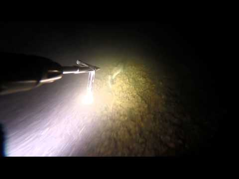 Подводная охота май 2014 Днестр / Spearfishing May 2014 Dniestr \\ GoPro Hero 3+ BE
