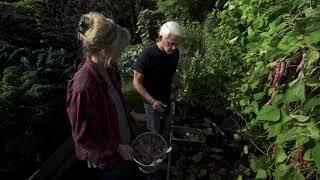 In Situ Worm Composting