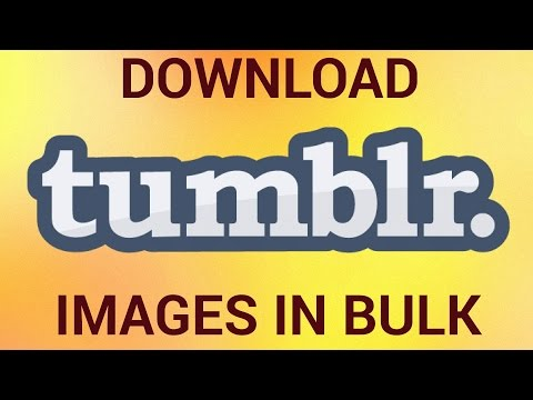 How to Download Tumblr Images in Bulk