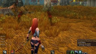 World Of Warcraft Quest Info: Venison for the Troops