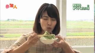 KBS京都テレビ「夢追人」滋賀編(2019年5月放送)草津の愛彩菜・稲富菜穂リポーター