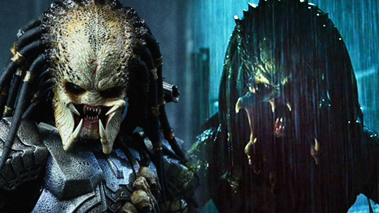 SCAR PREDATOR vs WOLF PREDATOR - WHO WOULD WIN IN A BATTLE ...