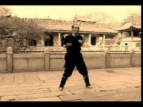 Pan Nam Wing Chun