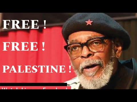 Address to the African Nation: Free free Palestine!