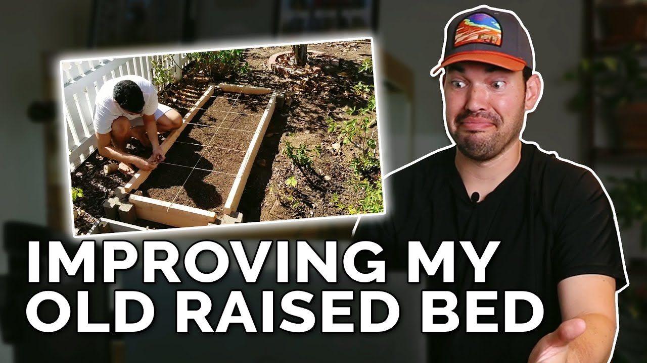 Fixing an Old Raised Garden Bed Design!