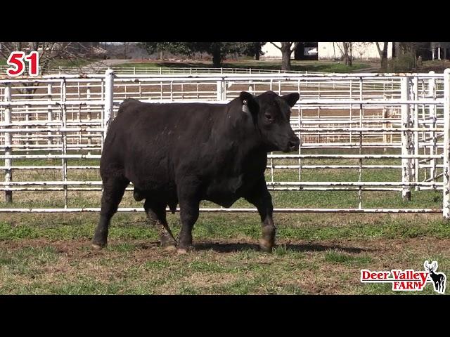 Deef Valley Farm Lot 51