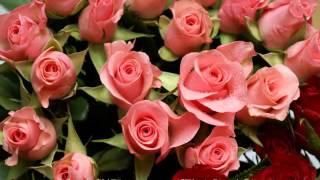 前川清さんの「薔薇のオルゴール」は、作詞:ちあき哲也 作曲:杉本真人。