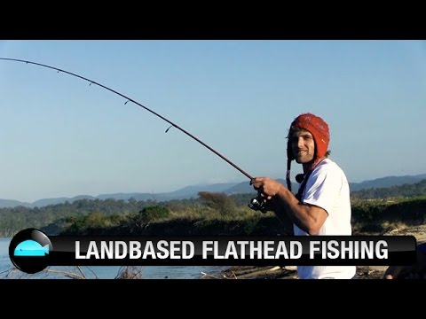 How To Catch Dusky Flathead On Lures | We Flick Fishing Videos