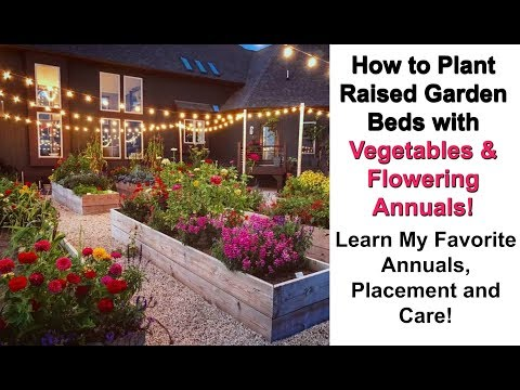 How to Plant a Raised Garden Bed with Vegetables and Flowering Annuals | Unique Vegetable Garden