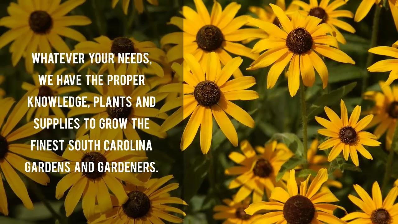 South Carolina Landscape Design Services   Garden Centers Near Columbia